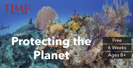 Protecting the Planet project image